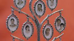 Как найти генеалогическое древо