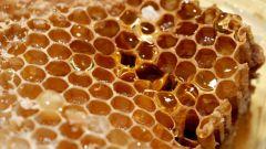 Как отличить хороший мед