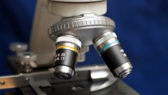 Как определить увеличение микроскопа