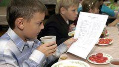 Как организовать школьное питание