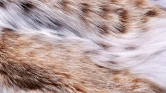 Как шить кожу или мех