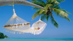 Как отдохнуть дешево на Мальдивах