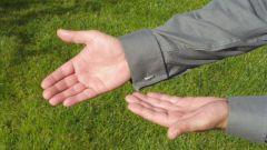 Как читать язык тела и жестов
