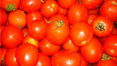 How to cook dishes from tomatoes