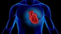 Что представляет собой клапан сердца