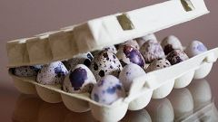 How to determine the freshness of the quail eggs