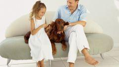 Как заставить мужчину полюбить не своего ребенка