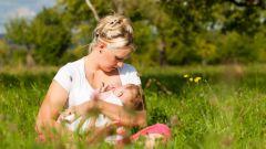 Как научить ребенка правильно брать грудь