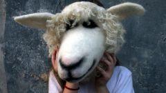 Как сделать маску овечки