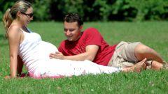Как определить результат теста на беременность