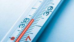 Высокая температура: как снизить ее показатель