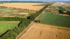 Как оформить землю для сельхозназначения