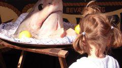 Как приготовить мясо акулы