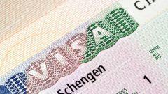 Как оформлять анкету на шенгенскую визу
