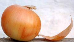 Как варить луковую шелуху