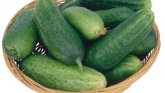 How to choose cucumbers
