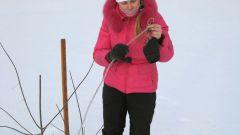 Как определить глубину промерзания