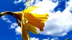 Как организовать посевные работы на майские праздники
