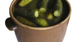 How delicious pickling cucumbers