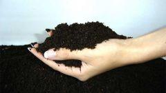Как обогатить почву