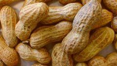 Как посадить арахис