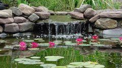Как оформить водоем