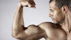 How to quickly gain muscle mass in the gym