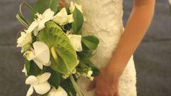 Как открыть прокат свадебных платьев