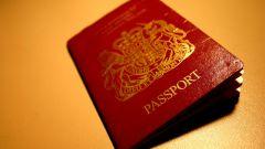 Как оформить паспорт гражданина РФ