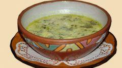 Как сварить щавелевый суп: рецепт