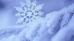 Как необычно отметить день рождения зимой