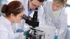 Как выполнить научно-исследовательскую работу
