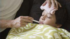 Как быстро избавиться от малярии