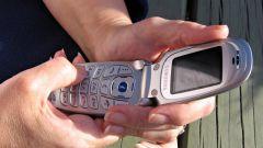 Как отправить СМС на Билайн без регистрации