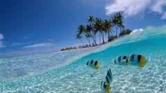 Отдых на Кубе: как провести время