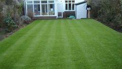 Как подготовить газон к летнему сезону