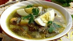 How to cook sorrel soup