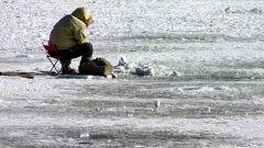 Как ловить на жерлицы зимой