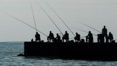 Как организовать рыбалку в компании