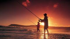 Как ловить рыбу летом