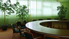 Как открыть бизнес в Омске