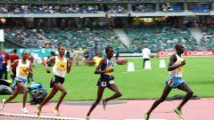 Как попасть на Летнюю Олимпиаду в Лондоне 2012