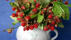 What to cook from wild strawberries