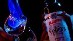 Что такое самбука