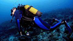 Как выбрать костюм для подводного плавания