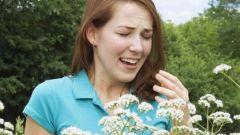 Как определить, есть ли аллергия