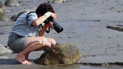 Как изучить базовые фотоэффекты в фотографии
