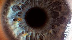 Где вырастили сетчатку глаза из стволовых клеток