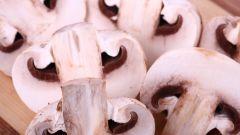 Как приготовить грибы тушеные