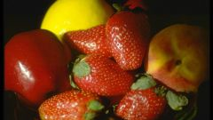When and how to plant strawberries